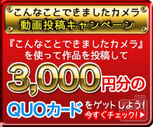 konnakoto-300-250